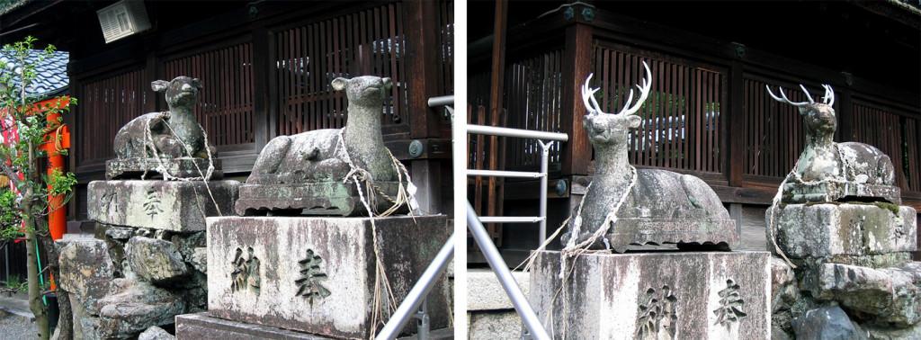 3-2 立木神社拝殿前二連の鹿r02