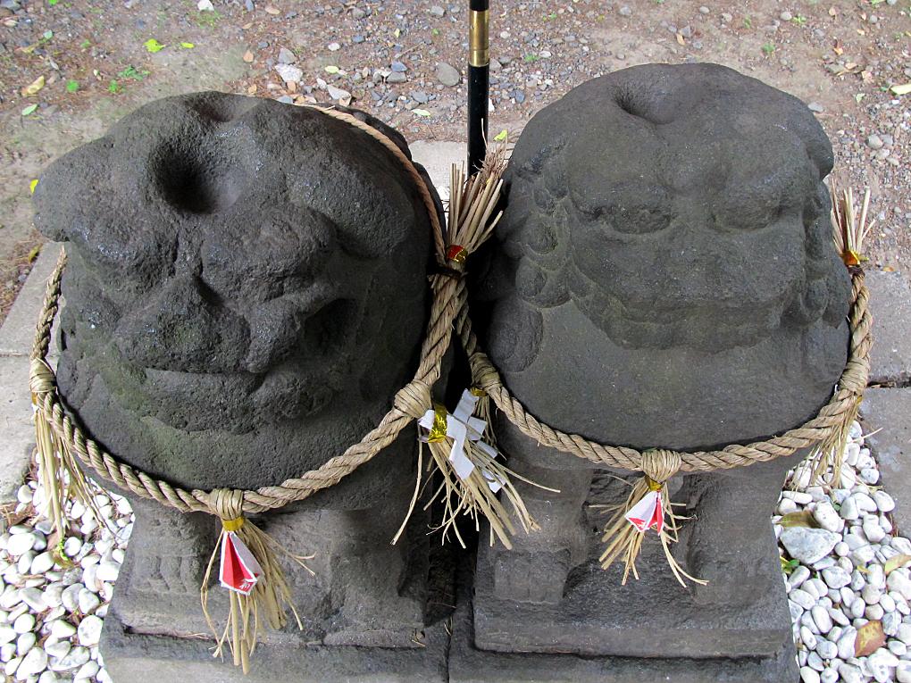 11-2 淺草神社夫婦狛犬2