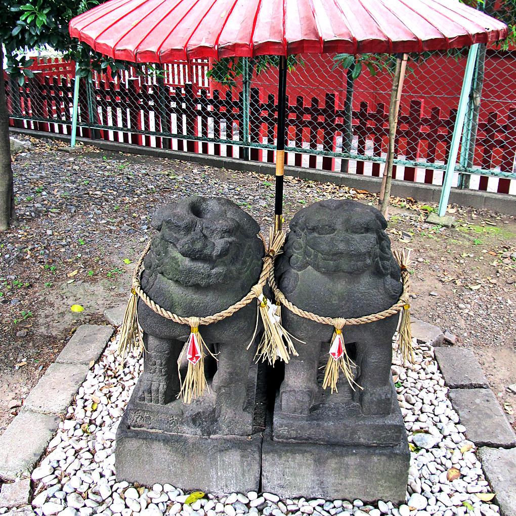 11-1 淺草神社夫婦狛犬1